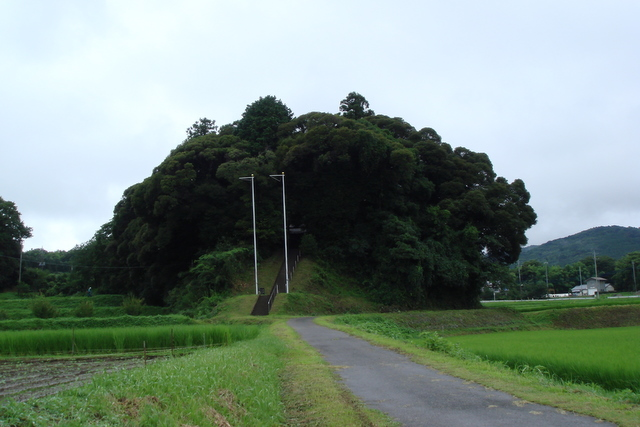 大宮神社のある森